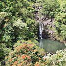 Puohokamoa Falls, Maui, Hawaii by Teresa Zieba