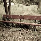 Park Bench by BeckyCote