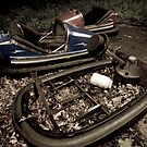 Bumper Cars by BeckyCote