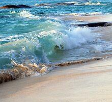 Wave by Robin Webster