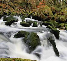 Winter at Golitha Falls by cwwphotography