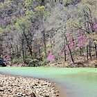 Long Pool - Big Piney Creek - Ozark National Forest by Kay  G Larsen