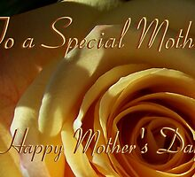 Happy Mother's Day  by Sunflwrconcepts