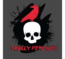 Skully Perches Photographic Print