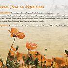 Herbal Teas as Medicines -Headaches by cdwork