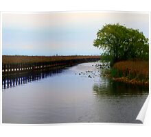 Boardwalk and Marsh 2 Poster