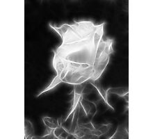 Essence of a Rose 2 Photographic Print