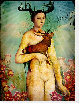 Summer by Catrin Welz-Stein