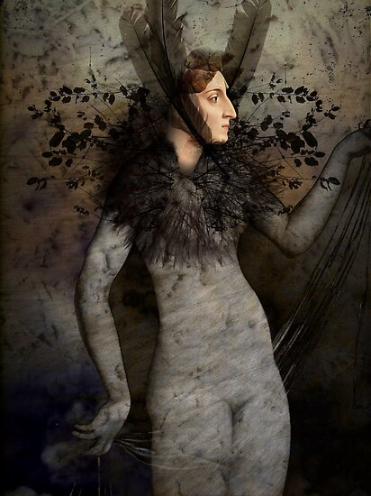 Winter by Catrin Welz-Stein