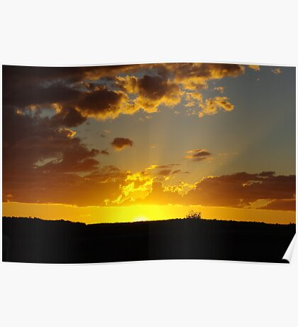 Last Rays on the Downs Poster