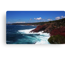 View From The Look-Out Canvas Print