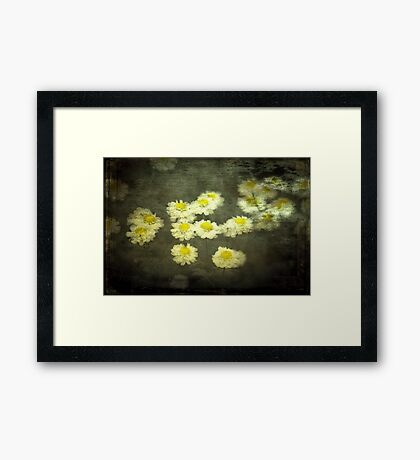 Daisies in Grunge Framed Print