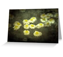 Daisies in Grunge Greeting Card
