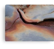 Rusty Bridge Canvas Print