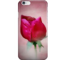 Late Summer Rose iPhone Case/Skin