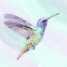 Humming Bird In Watercolors, On A Watercolor Blend Background by Moonlake