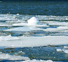 Ice on the St. Lawrence by Moxy