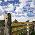Alberta Farm by Myron Watamaniuk