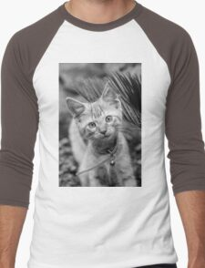 Playful Kitten Men's Baseball ¾ T-Shirt