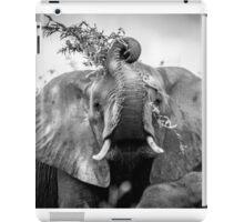 Silly Elephant iPad Case/Skin
