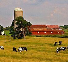 Oxford Farm by sundawg7