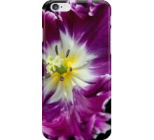 a Tulip with a Picasso touch.. iPhone Case/Skin