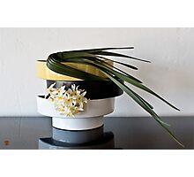 Ikebana-108 Photographic Print