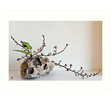 Ikebana-109 Art Print