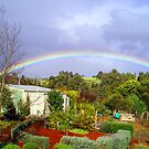 The Garden at &quot;Stoney Bottom&quot; in Bridgetown, WA by Elaine Teague