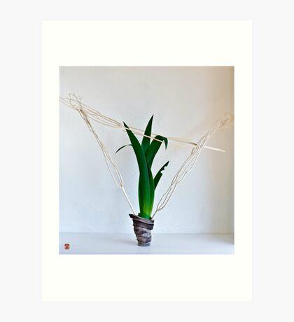 Ikebana-115 Art Print