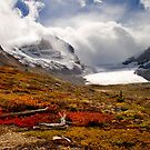 Athabasca Glacier and Mountains, Icefields Parkway NP, Alberta, Canada by photosecosse /barbara jones