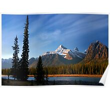 Icefields Parkway National Park, Lodgepole Pine and river, Alberta, Canada. Poster