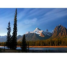 Icefields Parkway National Park, Lodgepole Pine and river, Alberta, Canada. Photographic Print