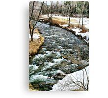 Spring Rushing Brook Canvas Print