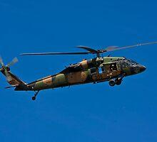 Black Hawk by Ross Jardine