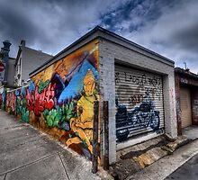 Enmore Street Art - Sydney Australia by Leigh Nelson