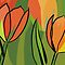 Thanksgiving Tulip