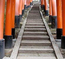 Fushimi Inari Jinja by ianseta