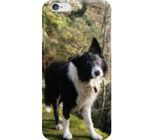 Indy at Nant-Y-Coed iPhone Case/Skin