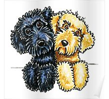 Black Yellow Labradoodles Lined Up Poster