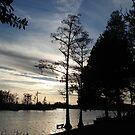 Mercurial Sunset - Bear Creek by May Lattanzio