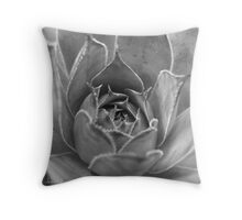 Hens and Chicks B&W Throw Pillow