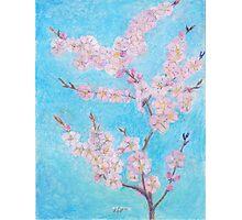 Apple Blossom  -oilpastels Photographic Print