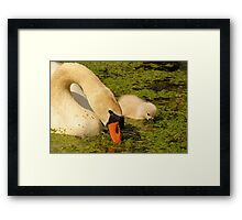 Mother & Child Framed Print
