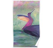 Colourful original bird artwork Poster