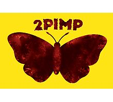 Kendrick Butterfly Photographic Print