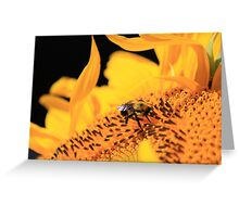Bumble Bee Flower Greeting Card