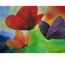Original butterfly artwork Photographic Print
