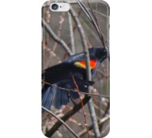 About to take flight iPhone Case/Skin