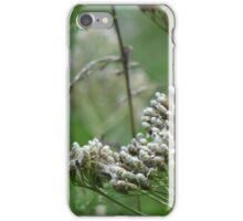 wild grasses 14 iPhone Case/Skin